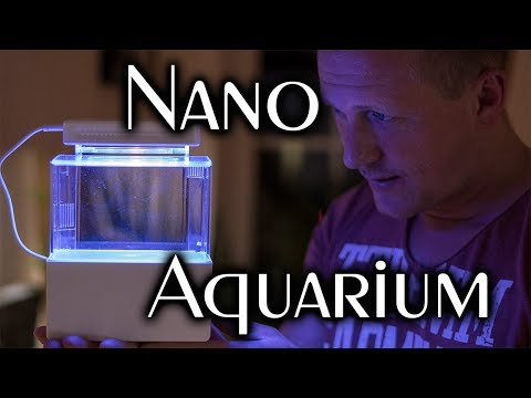 Nano Salzwasseraquarium Teil 1