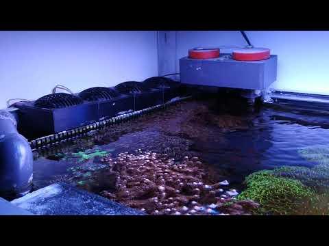 Binnenmeer.de: Gehäuse und Abdeckung für 80mm Lüfter aus dem 3D-Drucker