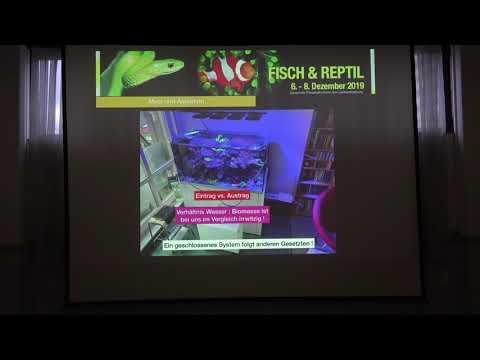 Fisch&Reptil: Vortrag Immo Gerber, dauerhafte Po4 Kontrolle